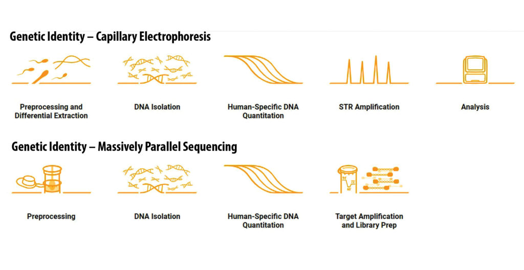 Promega technology for forensic DNA analysis